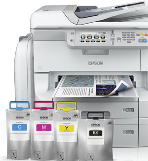 Epson WorkForce RIPS